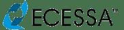 Ecessa logo_300_NO BACKGROUND.png